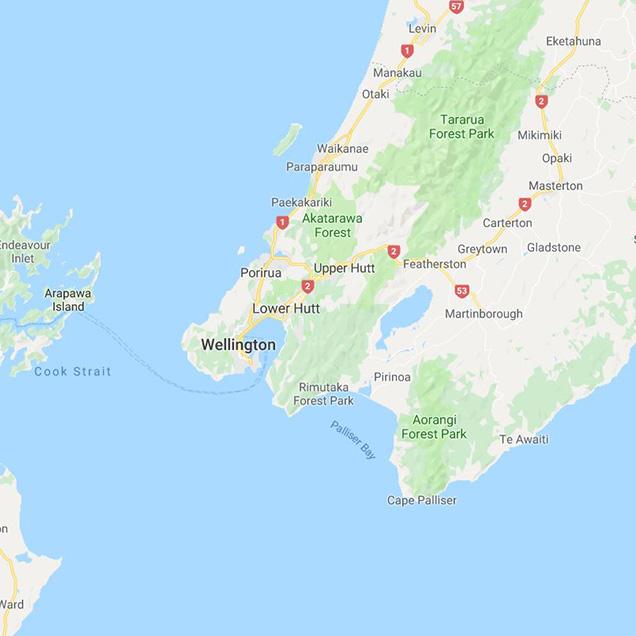Wellington city map